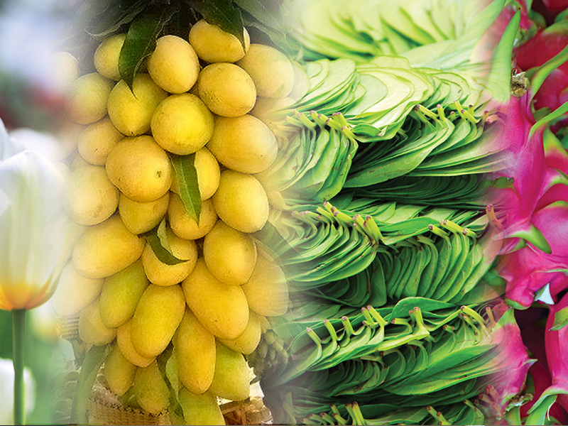 Fruits, flowers and vegetables
